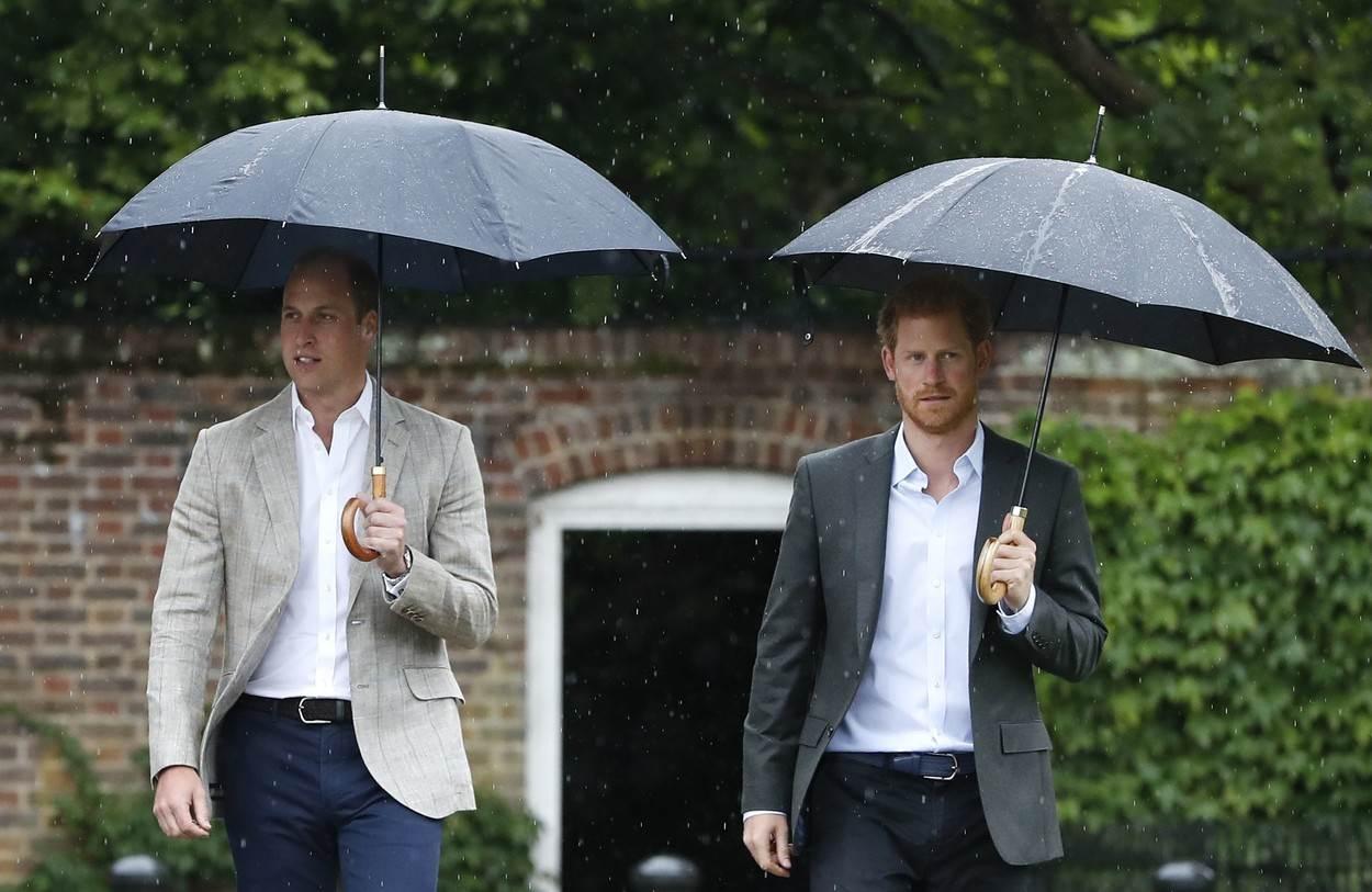 Princ Harry i William