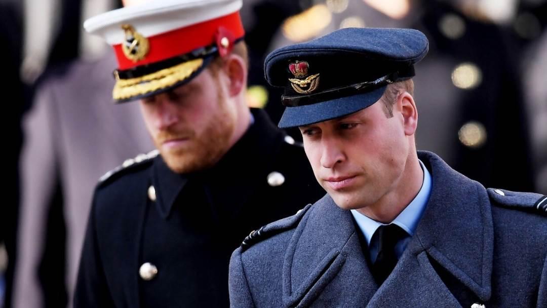 Prinčevi Harry i William